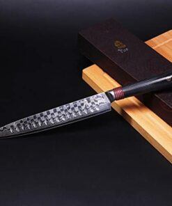 Tuo Cutlery 9 inch Slicing Carving Knife Japanese AUS 10D Damascus Steel Meat Knife with Ergonomic G10 Handle RING D Series